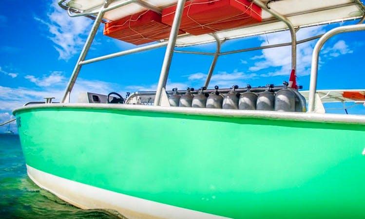 Diving Trips in Bora Bora, French Polynesia