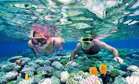Enjoy Snorkeling In Mirissa, Sri Lanka