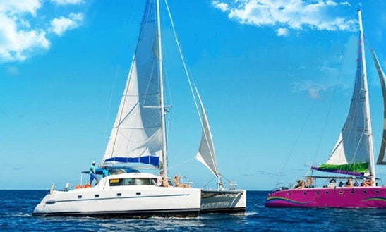 Catamaran Party-three Northern Islands Of Mauritius