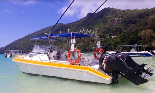 Enjoy Fishing At Portlaunay , Seychelles On Cuddy Cabin