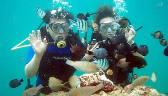 Enjoy Underwater Views Of Bali On A Scuba Diving Trip In Indonesia