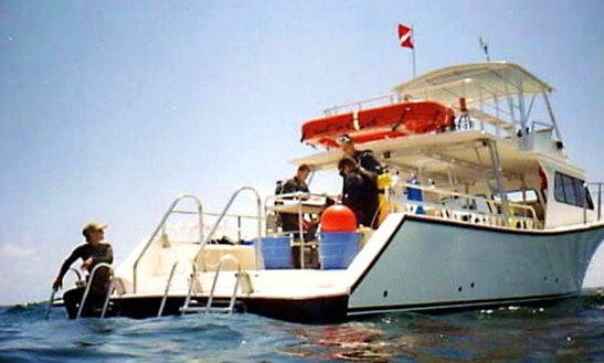 Chartered Motor Boat And Diving In Livadi