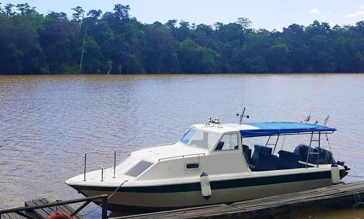 Sukau Rainforest Lodge (Motor Yacht)