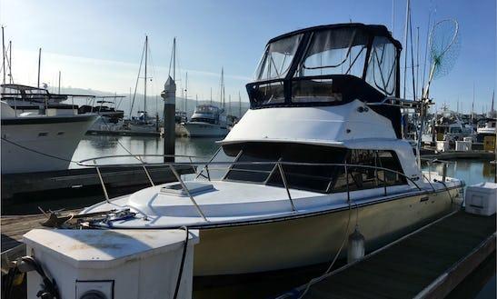 Charter 30' Phoenix Motor Yacht In Benicia, California