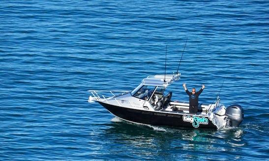 Enjoy Fishing In Paihia, New Zealand On Surtees 650 Cuddy Cabin