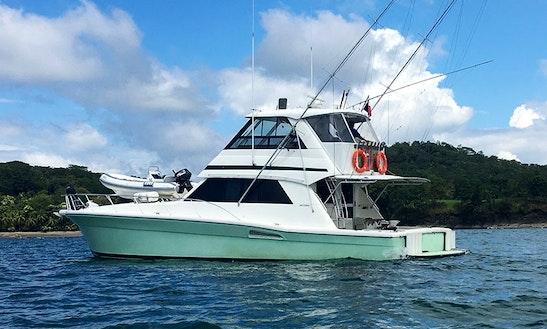 Private Fishing Trip On 52ft  Flybridge Sportfisher On Island Of Boca Brava