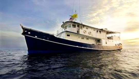 Liveaboard Diving Charters On