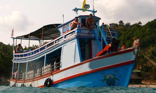 (30 Pax) Carabao Dive Tour  In Tambon Ko Tao