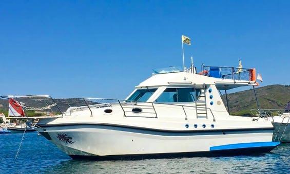 Charter 30' Elba Motor Yacht in Marina di Campo LI, Italy