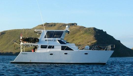 Bali Boat Power Catamaran Cruise In Bali And Nusa Lembongan