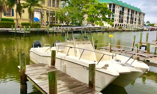 Offshore Fishing, Diving, & Cruises On 25 Foot World Cat