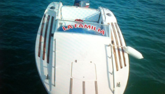 Cruise On A Cuddy Cabin Charter In The Red Sea Governorate, Egypt