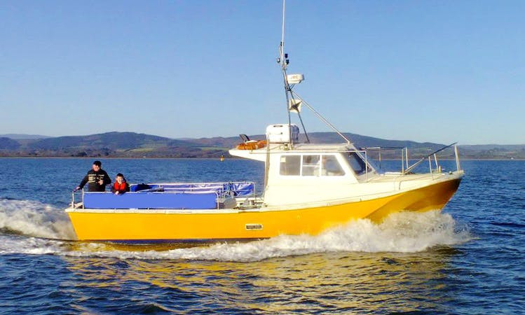 'Lisín I' Fishing Charter & Tours in Wicklow Town, Co. Wicklow, Ireland.