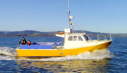 'lisín I' Fishing Charter & Tours In Wicklow Town, Co. Wicklow, Ireland.
