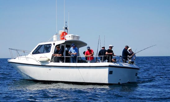 Evolution 33' Head Boat Fishing Trips In Plymouth, United Kingdom