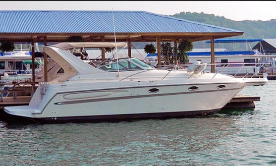 Charter This 12 Person Motor Yacht In Vila Nova De Gaia, Portugal