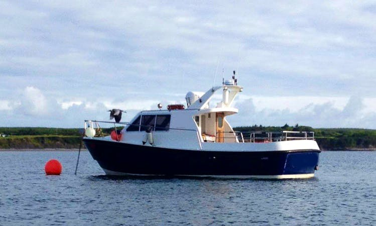 37' Fishing Charter In Clare