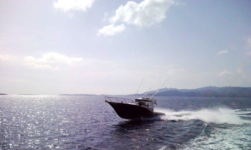 Enjoy Fishing in Sardegna, Italy on 38' Storm 35 Sport Fisherman