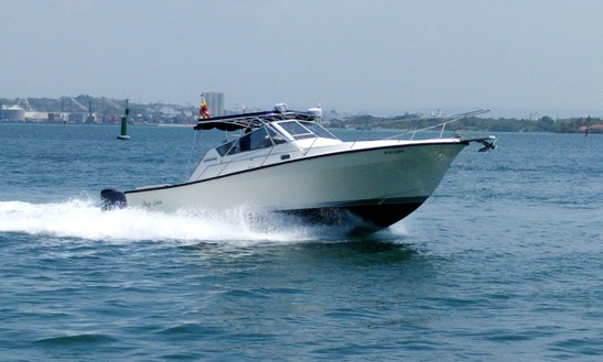 Motor Boat Charater In Cartagena