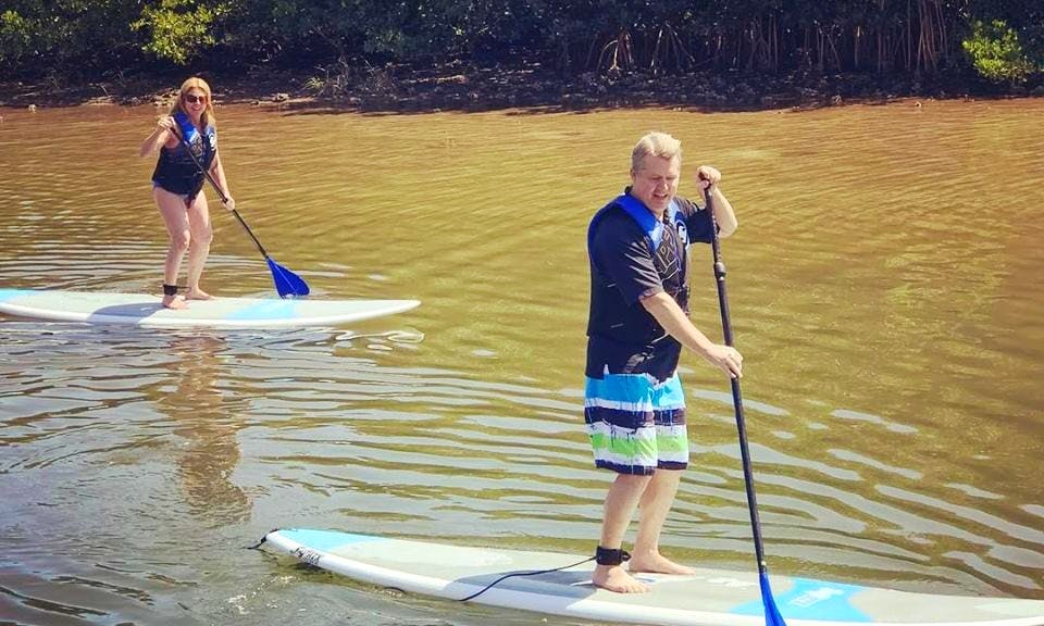 Stand Up Paddle Board Rentals In Tampa, Florida