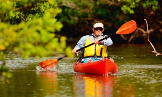 Kayak Rental In Tampa, Florida