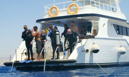 Diving Trips In Aqaba, Jordan
