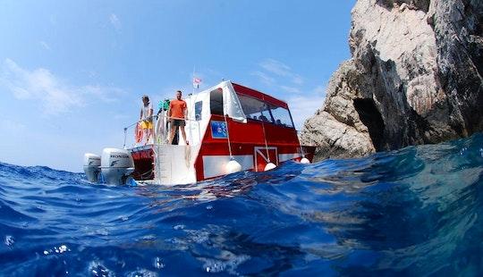 Red Catamaran Diving Trips & Courses In Komiža