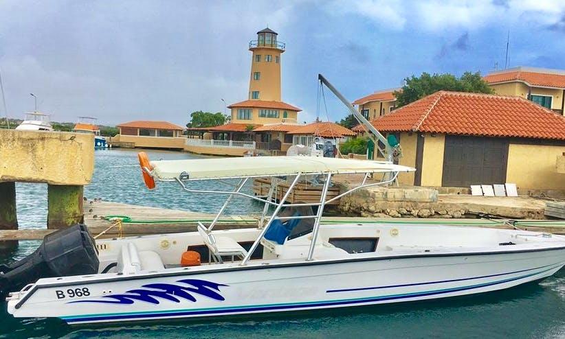 Boat Diving in Kralendijk