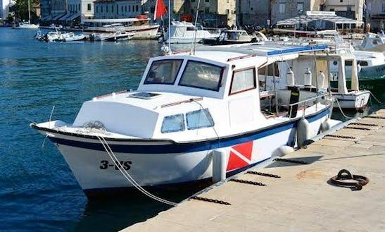 ( 15 Pax ) Passenger Boat In Vis