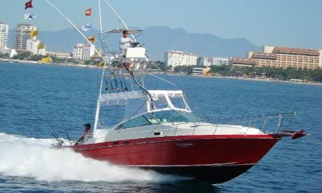 Sea Ray 34 Ft. Cuddy Cabin/Walk Around Rental in Puerto Vallarta