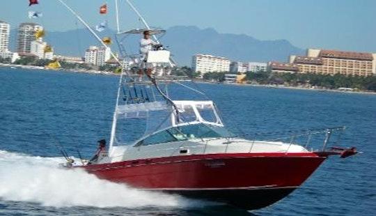 Sea Ray 34 Ft. Cuddy Cabin/walk Around Rental In Puerto Vallarta