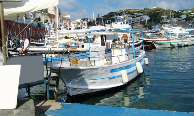 7 Person Center Console with Bimini for Rent in Ponza, Italy