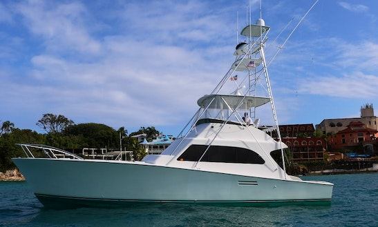 Private Charter On 50' Luxury Yacht In Sosua Bay, Near Puerto Plata