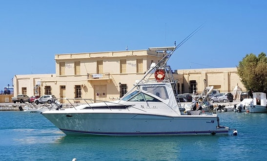 Charter A Motor Yacht With An Excellent Guide In Rethymno, Greece