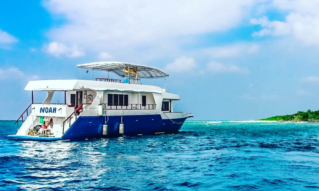 Safari for Cruising, Surfing, Diving and fishing in Maldives