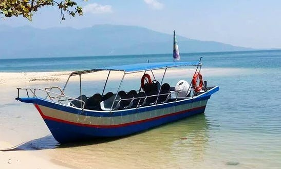 Charter A 10 Seater Passenger Boat In Penang, Malaysia