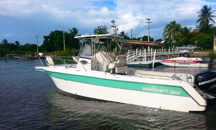 Enjoy Fishing in Cabedelo, Brazil on Wallcraft Center Console