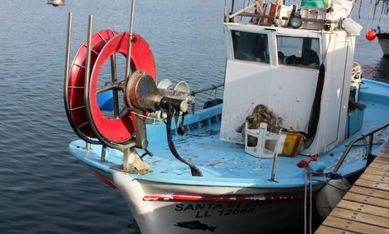 Fishing Out Of Zygi Marina - Captained Fishing Tours!