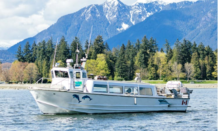 Island Hopping, Whale Watching and Tours In Vancouver, Canada