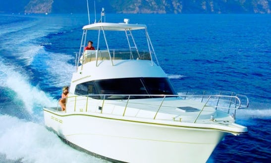Rodman 1250 Rent With Licence Or Our Captain.port Alcudia
