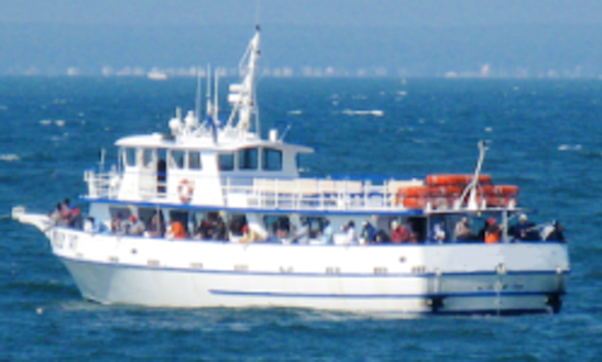 Fishing Chrter On 85ft Trwaler In Waterford, Connecticut