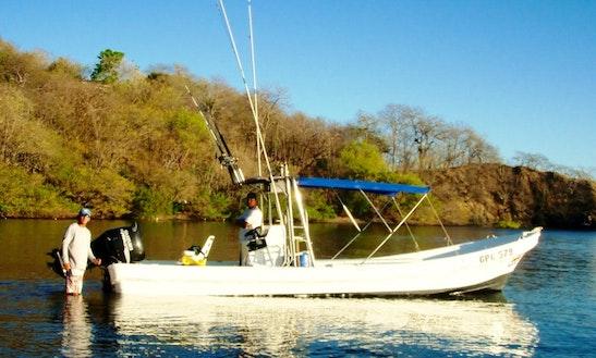 Rooster Fishing / Live Bait Fishing In Playa Hermosa, Guanacaste