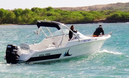 Charter 23' Sea Pro 228 Dc - Pretty Zoe Bowrider In Le Marin, Martinique