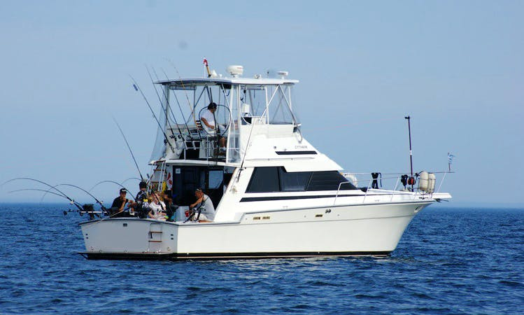 Lake Ontario Fishing Charters (With captain only !)