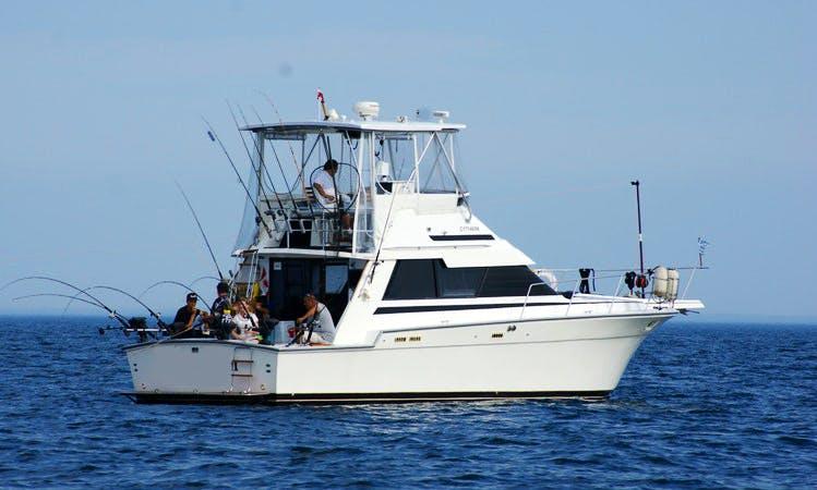 6hrs Salmon Sport Fishing 6 people $799 usd