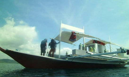 Daily Dive Trips To The Prominent Dive Sites In Palawan, Philippines!