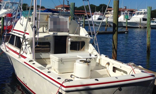 Deck Boat Rental In St. Augustine