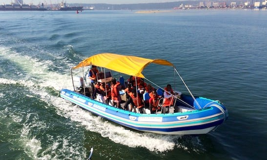 Charter Bafana Rigid Inflatable Boat In Durban, South Africa