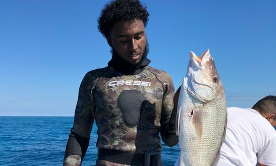 Spearfishing Charter