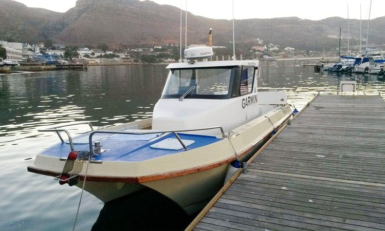 Enjoy Big Game Fishing charter in Cape Town, Western Cape on 28' Butt Cat Cuddy Cabin
